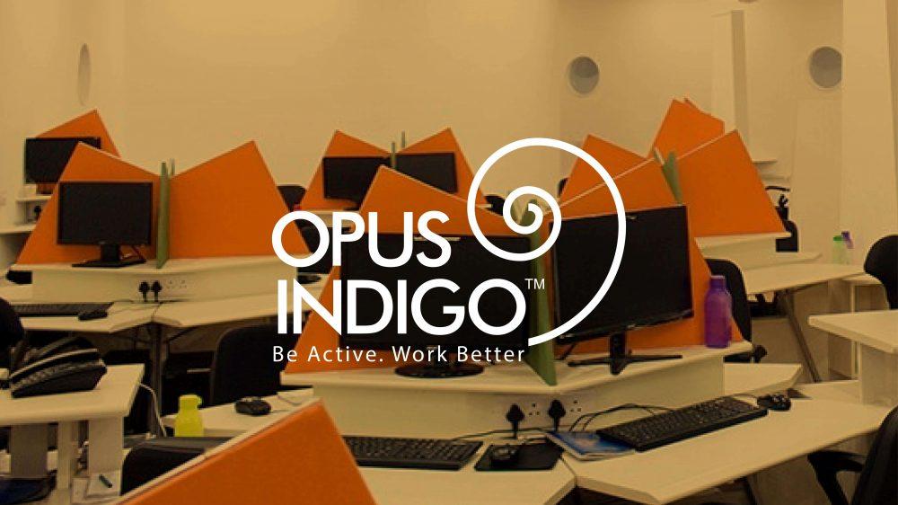 Opus Indigo Design